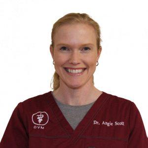 Dr. Angela Scott